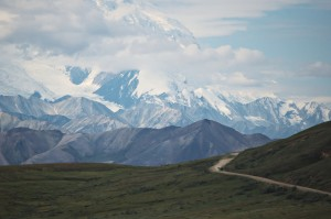 the park road beneath denali