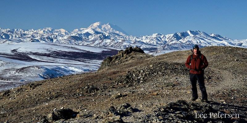 Alpine trail in spring - Denali National Park