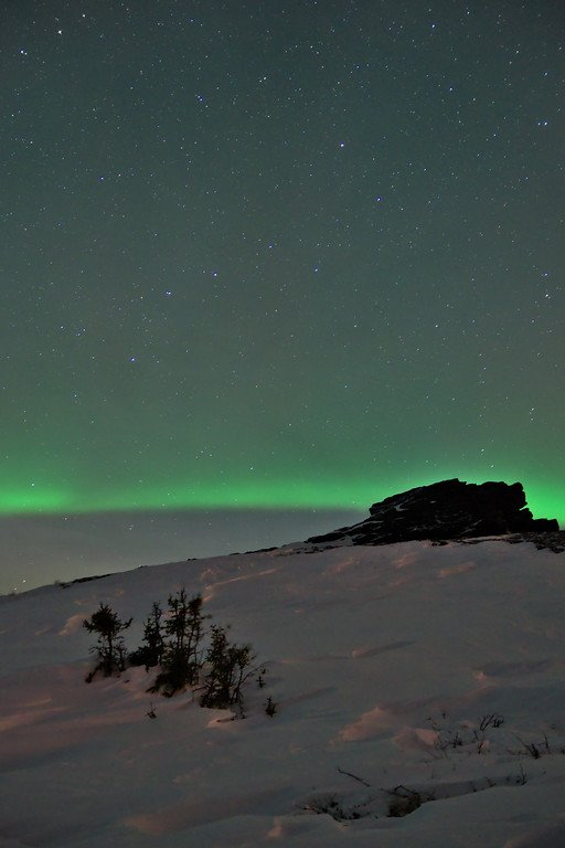 Low auroral band and the big dipper over rock outcropping and spruce.