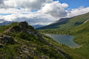 A hidden alpine pond on the way up to a ridge between the Fells and Castner Glaciers.