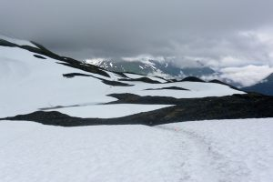 Snowy trail on the Harding Icefield Trail in July.