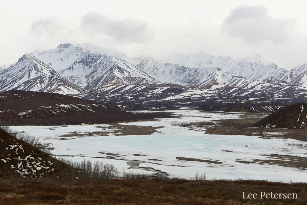Mountains over the East Fork River in Denali National Park