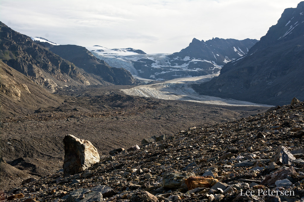 Looking up the northern branch of the Castner Glacier
