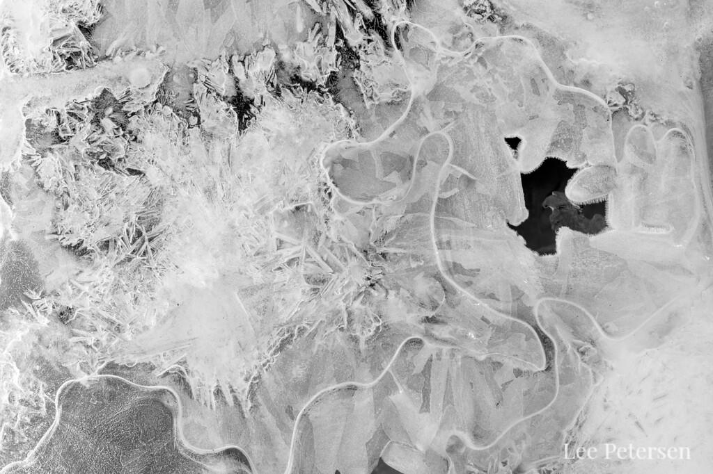 Great detail in ice near the Sanctuary River in Denali National Park & Preserve