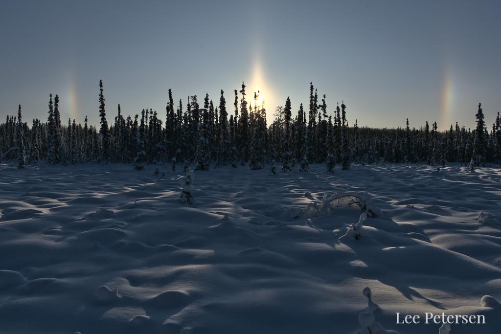 Parhelia, or sun dogs in the sky over a snowy forest in Fairbanks, Alaska