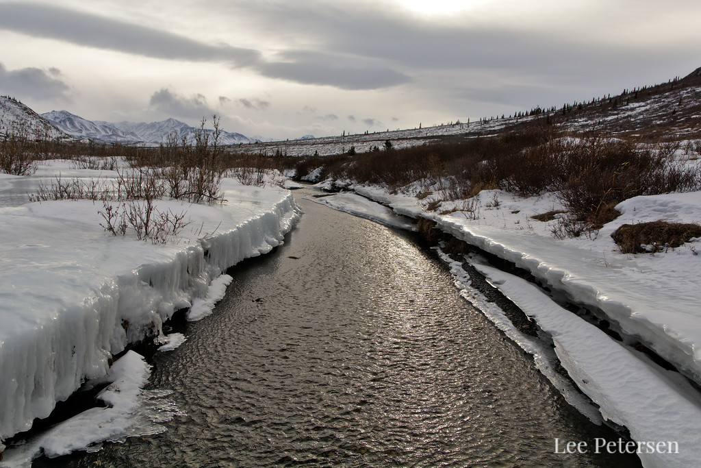 Open water on the Savage River in early March