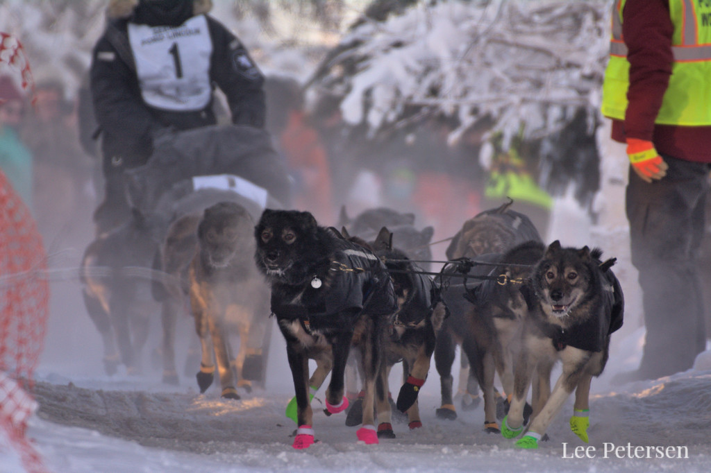 Richie Bettie starting the 2020 Yukon Quest in Fairbanks, Alaska